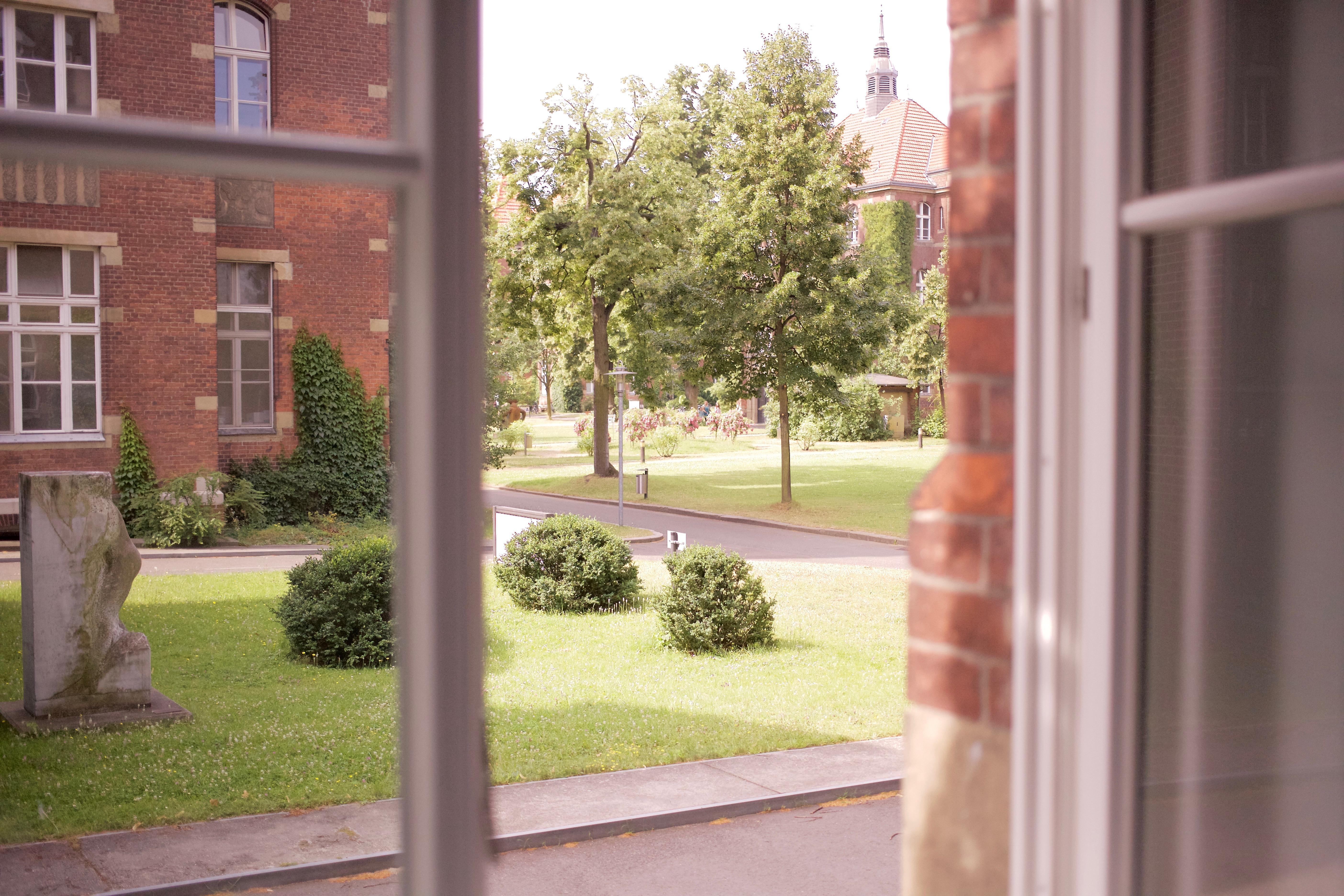 A vista para o jardim do nosso quarto. Berlin Westend, julho de 2016.